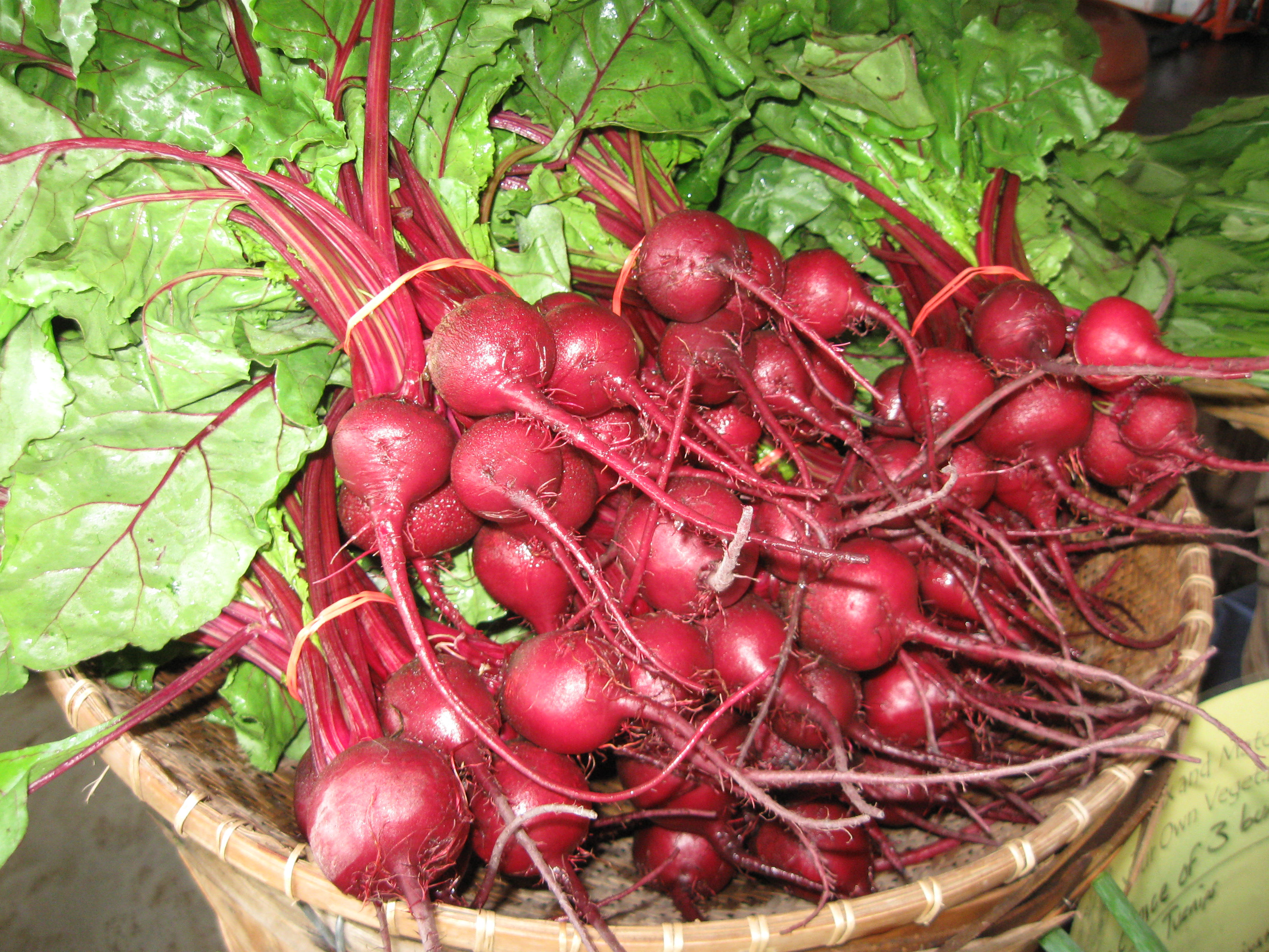 Radish and Turnip Recipes | Open Hands Farm